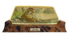 Leopard Scrimshaw