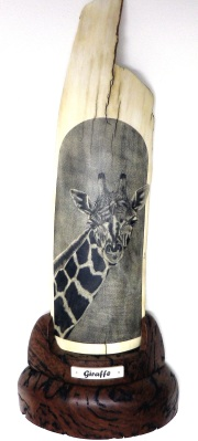 Giraffe Scrimshaw