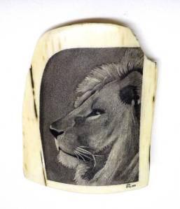 Lion Scrimshaw