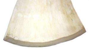 Mammoth Ivory Cut End
