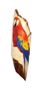 Parrot Scrimshaw With Body and Wing Done