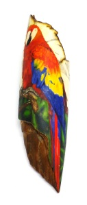 Parrot Scrimshaw With Bottom Area of Background Added
