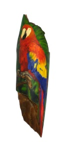 Fully Coloured Parrot Scrimshaw
