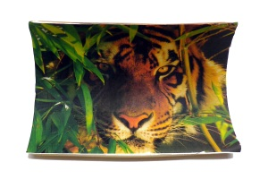 Bamboo Tiger Scrimshaw During Acetone Transfer