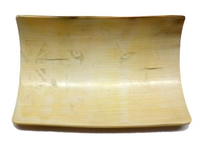 Bamboo Tiger Scrimshaw With Basic Outline