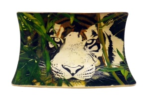 Bamboo Tiger Scrimshaw Top of Head Added