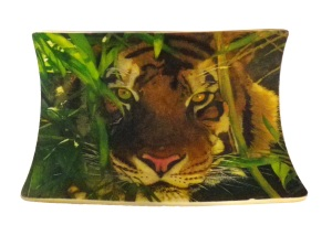 Bamboo Tiger Scrimshaw Finished