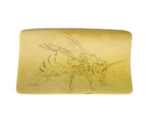 Bee Scrimshaw Basic Outline Added