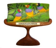 Gouldian Finch Scrimshaw