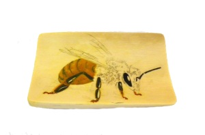 Bee Scrimshaw Abdomen and Some Details Added