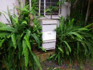 Inspirational Bee Hive